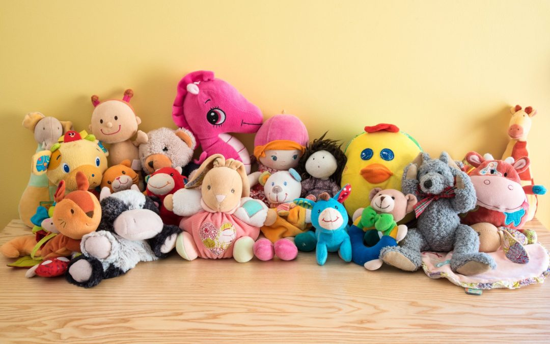 TIP NUMBER 3: TEACH IT TO YOUR TEDDY BEARS!